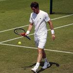 Học tennis qua ti vi: Khởi động với bóng