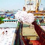 Thị trường - Tiêu dùng - Kiểm tra xuất khẩu nông, lâm, thủy, hải sản