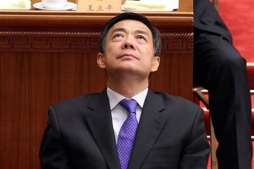 Vợ Bạc Hy Lai sẽ chống lại chồng vì con? - 1