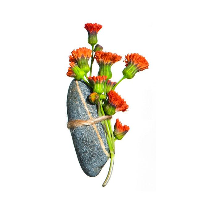 Chú rể thêm ngọt ngào nhờ hoa cài áo - 6