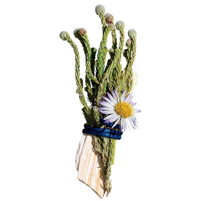 Chú rể thêm ngọt ngào nhờ hoa cài áo - 8