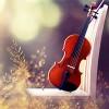 Lắng nghe và cảm nhận: Sad Violin