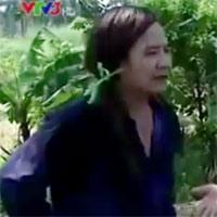 Hài Quang Tèo: Cái máy tuốt lúa