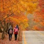 Hàn Quốc: Giấc mơ tình yêu