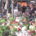 Thị trường - Tiêu dùng - Thời tiết bất lợi, giá thực phẩm khó giảm