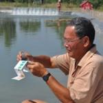 Thị trường - Tiêu dùng - TQ tận thu tôm nguyên liệu, DN Việt lao đao