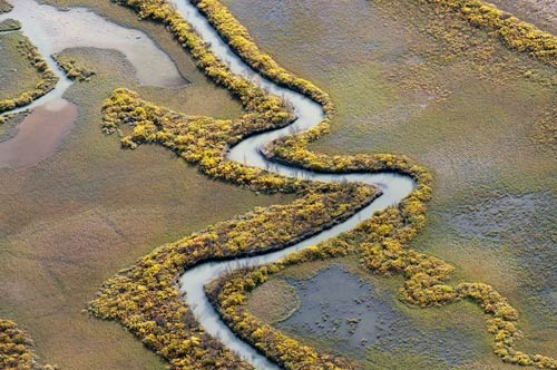 Tuyệt cảnh đồng bằng sông Rapa ở Thụy Điển - 5
