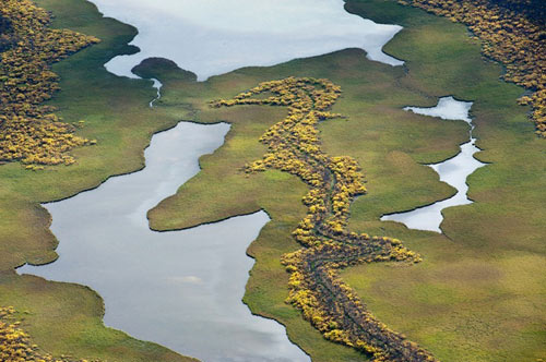 Tuyệt cảnh đồng bằng sông Rapa ở Thụy Điển - 6