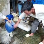 Tin tức trong ngày - Vụ chôn thuốc sâu: Dựng thêm lều canh gác