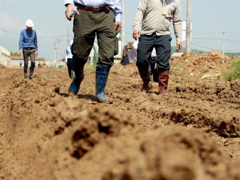 Cận cảnh Dự án 5.000 tỷ ngập bùn đất - 2