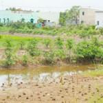 Tài chính - Bất động sản - Sẽ cho dân sở tại xây nhà trên đất nông nghiệp
