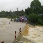Tin tức trong ngày - 14 người chết và mất tích vì bão số 8
