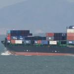 Tin tức trong ngày - Tàu container đâm tàu cá rồi bỏ chạy