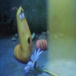 Video Clip Cười - Phim hoạt hình Larva: Vật thể bay không xác định