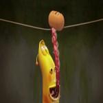 Video Clip Cười - Phim hoạt hình Larva: Thăng bằng trên dây