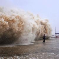 TQ: Siêu bão Usagi càn quét, 25 người chết