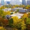 Phải lòng Seoul