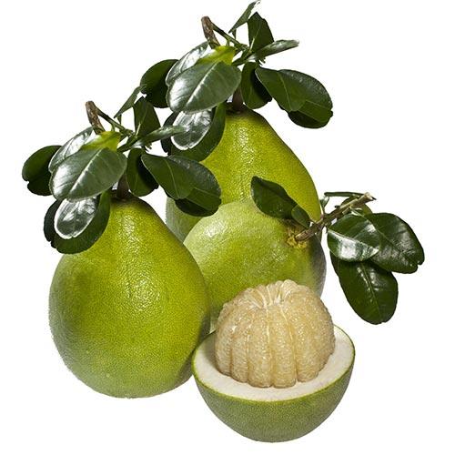 7 loại trái cây giúp làn da láng mịn - 1