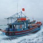 Tin tức trong ngày - Xác định tọa độ của tàu cá Quảng Ngãi lúc bị TQ bắt