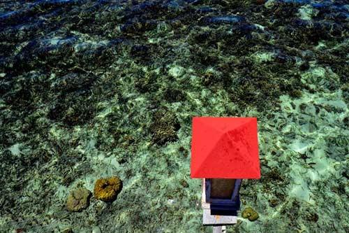 Hòn đảo xanh thần tiên ở biển Cebu - 5