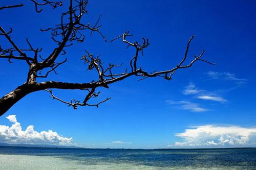 Hòn đảo xanh thần tiên ở biển Cebu - 6