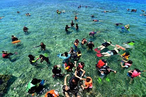 Hòn đảo xanh thần tiên ở biển Cebu - 9