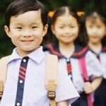Giáo dục - du học - Không dùng điểm số đánh giá học sinh tiểu học