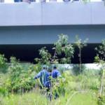 Tin tức trong ngày - Đi vệ sinh phát hiện xác người trong bụi rậm