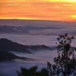 Du lịch - Sáng sớm đầy sương mờ trên đỉnh Mẫu Sơn