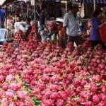 Thị trường - Tiêu dùng - Trái cây cuối mùa, hút hàng tăng giá nóng