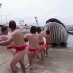 Phi thường - kỳ quặc - Lễ hội kỳ lạ: Đóng khố, bắt cá voi giả
