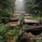 Du lịch - Rùng rợn nghĩa địa ô tô 70 năm tuổi ở Bỉ