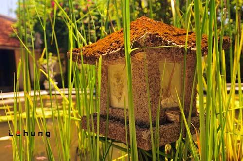 Nét thanh bình của nhà vườn phố Huế - 7