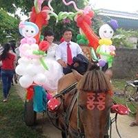 Rước dâu bằng xe ngựa xôn xao dân mạng