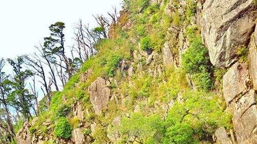 Chinh phục ba đỉnh Tà Xùa - 4