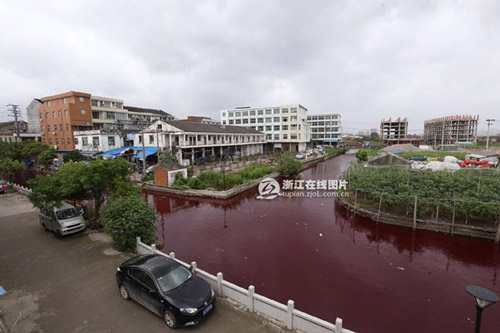 """TQ: Nước sông biến thành """"màu máu"""" chỉ sau 1 đêm - 1"""