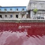 """Tin tức trong ngày - TQ: Nước sông biến thành """"màu máu"""" chỉ sau 1 đêm"""