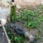 Tin tức trong ngày - Phát hiện xác chết trôi sông bị trói 2 chân