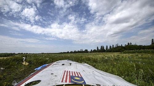 Vụ MH17: Một số nạn nhân không bao giờ được tìm thấy - 1