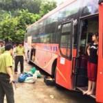 Tin tức trong ngày - Bắt xe khách chở 30 cá thể động vật hoang dã