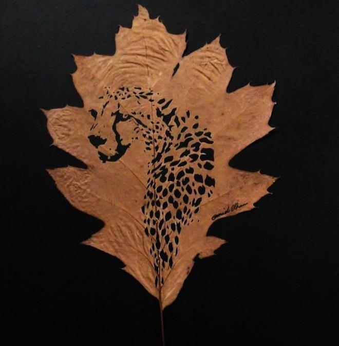 Chàng trai sáng tạo nghệ thuật trên lá đến khó tin - 4
