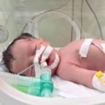 Tin tức trong ngày - Em bé thần kỳ sinh ra trong bom đạn Gaza qua đời