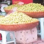 Thị trường - Tiêu dùng - Táo mèo Tây Bắc trộn hàng Trung Quốc tràn vỉa hè HN