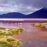 Du lịch - Ấn tượng những hồ nước kỳ lạ nhất thế giới