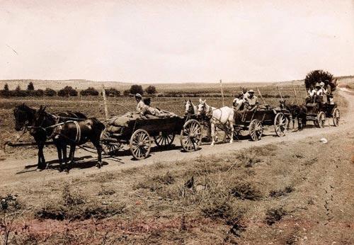 Ghé thăm ngôi làng kiểu Moshav nổi tiếng ở Isael - 4