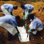 Tin tức trong ngày - Hàng không Anh ngừng bay tới Tây Phi vì sợ virus Ebola