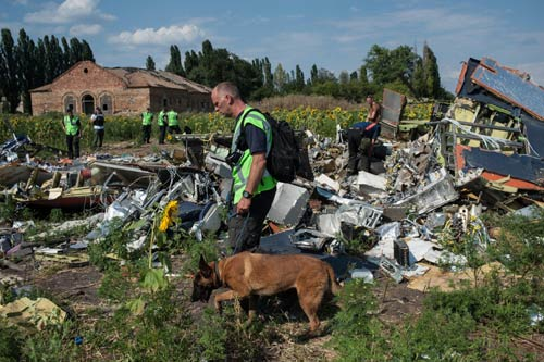 Hà Lan đòi chấm dứt tìm kiếm xác nạn nhân MH17 - 2