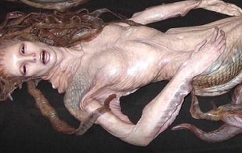 """Sự thật bất ngờ về """"xác nàng tiên cá"""" trên bãi biển - 1"""
