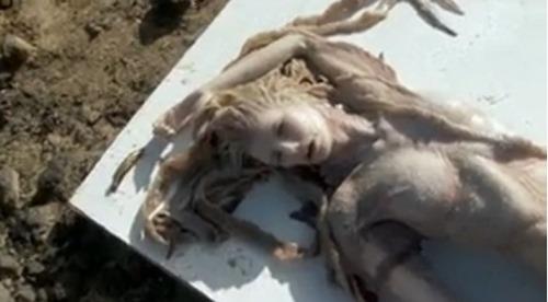 """Sự thật bất ngờ về """"xác nàng tiên cá"""" trên bãi biển - 6"""