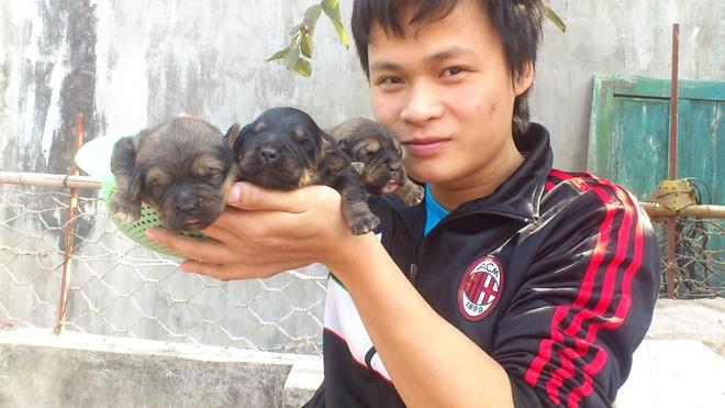 8X Việt nuôi chó đắt nhất hành tinh thành đại gia - 1